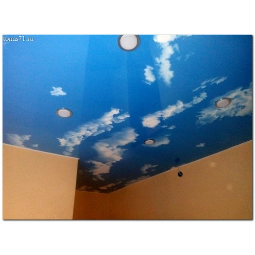 Экзотические натяжные потолки
